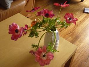 P1120945 bloemen bouke_1