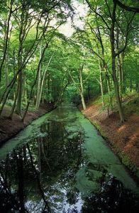 270px-Clingendael_landgoed_park