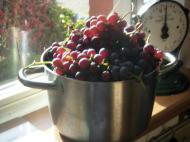 Beurshandigheidjes en uit de keuken van …. deel21