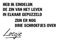 zin_van_het_leven_loesje